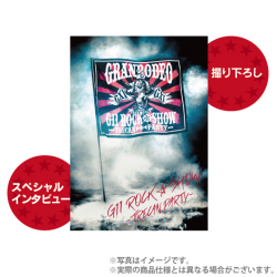granrodeo_g11_pamphlet